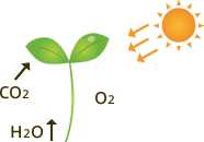 光触媒技術の原理の画像